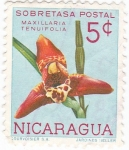 Sellos de America - Nicaragua -  flores