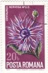 Sellos de Europa - Rumania -  flores