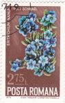 Stamps Romania -  flores