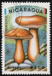 Sellos del Mundo : America : Nicaragua : SETAS-HONGOS: 1.201.003,01-Boletus luridus -Dm.985.12-Y&T.1363-Mch.2563-Sc.1405