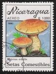 Sellos del Mundo : America : Nicaragua : SETAS-HONGOS: 1.201.012,01-Boletus edulis -Dm.990.29-Y&T.A1315-Mch.3002