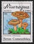 Sellos del Mundo : America : Nicaragua : SETAS-HONGOS: 1.201.013,01-Lactarius deliciosus -Dm.990.30-Y&T.A1316-Mch.3003