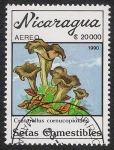 Sellos del Mundo : America : Nicaragua : SETAS-HONGOS: 1.201.015,01-Craterellus cornucopioides -Dm.990.32-Y&T.A1318-Mch.3005