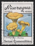 Stamps : America : Nicaragua :  SETAS-HONGOS: 1.201.016,01-Cantharellus cibarius -Dm.990.33-Y&T.A1319-Mch.3006