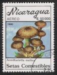 Sellos del Mundo : America : Nicaragua : SETAS-HONGOS: 1.201.017,00-Armillariella mallea
