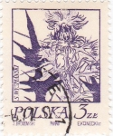 Stamps Poland -  flores