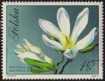Stamps of the world : Poland :  Magnolia Japonska