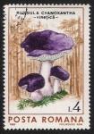 Sellos del Mundo : Europa : Rumania : SETAS-HONGOS: 1.213.025,00-Russula cyanoxantha