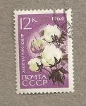 Sellos de Europa - Rusia -  Flor del algodón