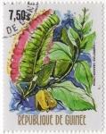 Stamps Guinea -  COMBRETUNI GRANDIFLORUM