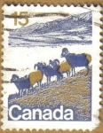 Stamps America - Canada -  Animales