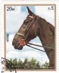 Sellos de Asia - Emiratos Árabes Unidos -  Sharja-caballo