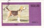Sellos del Mundo : Asia : Nagaland : perros-Beagle
