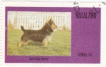 Stamps Asia - Nagaland -  perros-Australian Terrier
