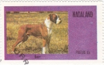 Stamps Asia - Nagaland -  perros-Boxer