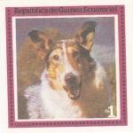 Sellos de Africa - Guinea Ecuatorial -  perros-Collie