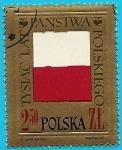 Stamps Poland -  Mil aniversario de Polonia - Bandera en relieve