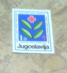 Sellos de Europa - Yugoslavia -  Cruz roja vacuna contra la tuberculosis