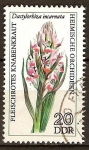 Sellos de Europa - Alemania -  Orqu�deas nativas.-Carnes rojas de orqu�deas, Dactylorhiza incarnata(DDR)