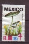 Sellos de America - México -  sellos de beneficencia
