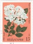 Stamps Bulgaria -  flores