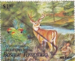 Stamps America - Mexico -  Bosque templado