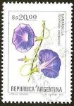 Sellos de America - Argentina -  FLORES - CAMPANILLA