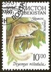 Stamps Asia - Uzbekistan -  DRYOMYS NITEDULA