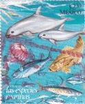 Stamps Mexico -  especies marinas