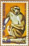 Stamps Africa - Equatorial Guinea -  Mono de Gibraltar