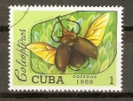 Sellos de America - Cuba -  MEGASOMA  ELEPHAS  FABRICUS