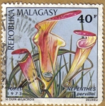 Stamps Africa - Madagascar -  NEPENTHES pervillei