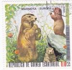 Sellos de Africa - Guinea Ecuatorial -  PROTECCION DE LA NATURALEZA -Marmota-Europa