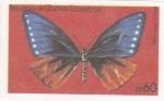 Stamps Equatorial Guinea -  mariposa