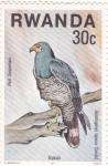 Stamps Rwanda -  pajaros