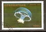 Sellos de Asia - Azerbaiyán -  ORCHISTOMA   PILEUS