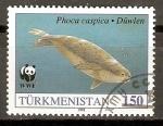 Stamps Asia - Turkmenistan -  FOCA   NADADORA