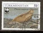 Stamps Asia - Turkmenistan -  FOCA   SOBRE   LAS   ROCAS