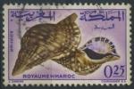 Sellos de Africa - Marruecos -  Caracola de mar