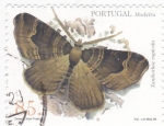 Stamps Portugal -  Madeira-mariposa