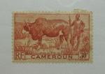 Stamps Africa - Cameroon -  Ganadero y Zebu.