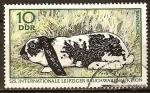 Sellos de Europa - Alemania -   Subasta internacional del tabaco de Leipzig: conejo (DDR).