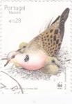Sellos de Europa - Portugal -  aves-Madeira