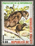 Sellos de Africa - Guinea Ecuatorial -  Mangosta de África