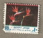 Stamps Egypt -  Flor Strelitsia