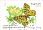 Stamps Spain -  fauna española en peligro de extincion-mariposa