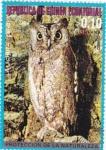 Stamps Equatorial Guinea -  protección de la naturaleza--la lechuza..europa
