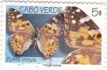 Stamps Cape Verde -  mariposas