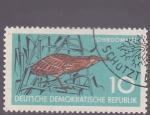 Stamps Germany -  codorniz