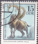 Stamps Germany -  zoologico-